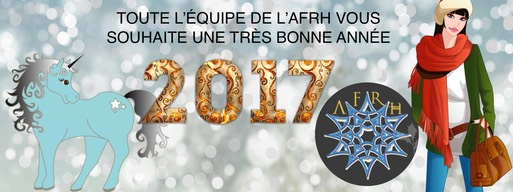 Nouvel An 2017 02